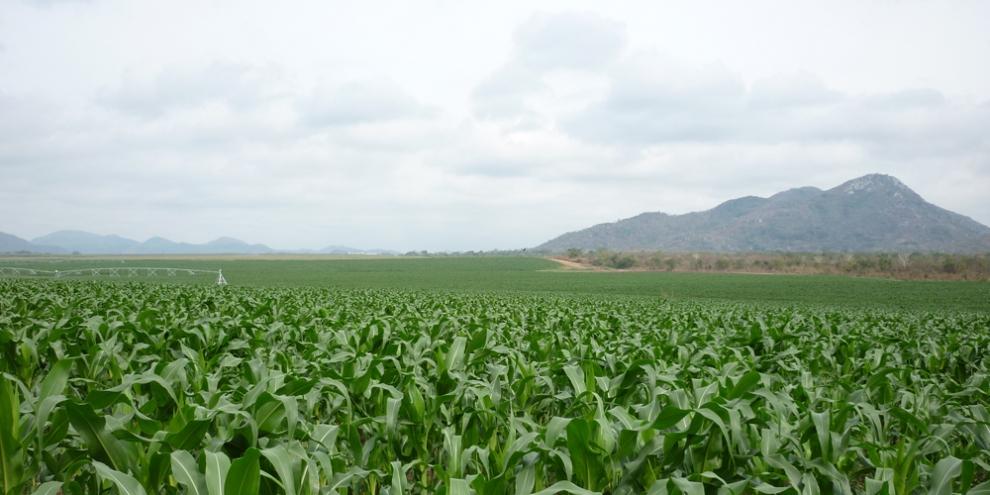 Hacienda en Angola